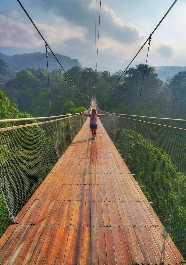Suspension Bridge Gede Pangrango