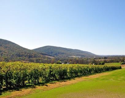 Benigna's Creek Vineyard and Winery