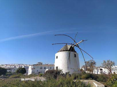 Windmills built by Pedro Fernández