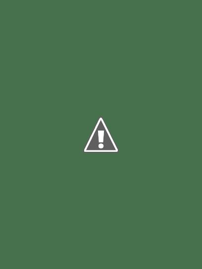 The Plant Society Kitchen