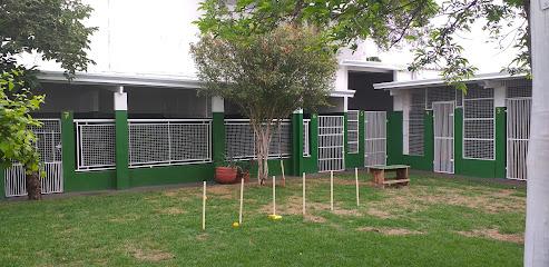 Cãosultório Hotel para Cães e Gatos