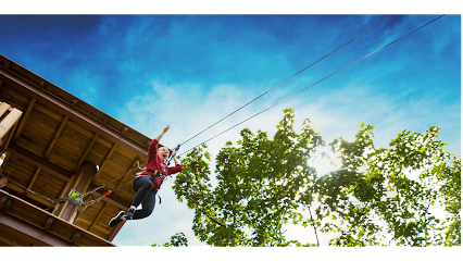 Go Ape Zipline and Adventure Park