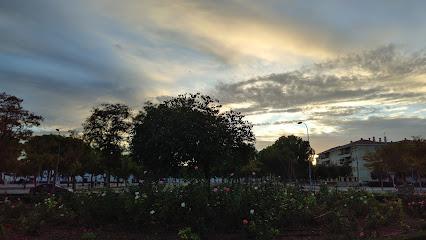 Carmen / Feria Park