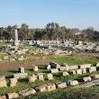 Teos Di̇onysos Tapinaği - Temple Of Di̇onysos
