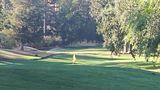 Golf Course «Adams Springs Golf Course», reviews and photos, 14347 Snead Ct, Cobb, CA 95426, USA