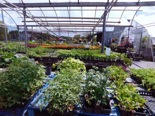 Garden center Silverbrook Garden Centre in Sydenham (ON) | LiveWay