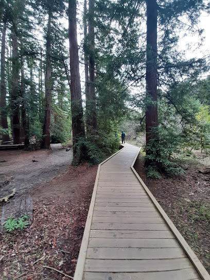 Redwood Grove Nature Preserve