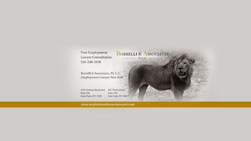 Borrelli & Associates P.L.L.C.