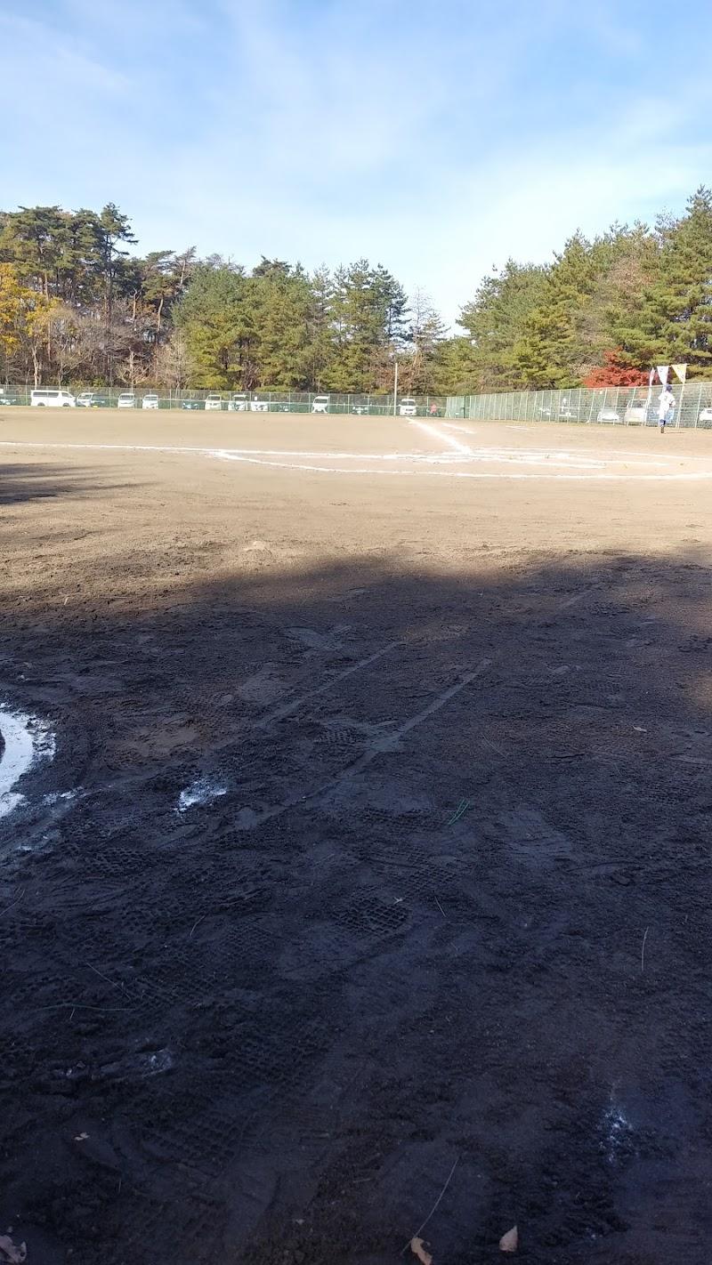 桜ヶ丘公園 野球場
