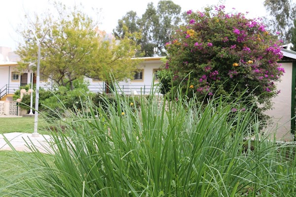 Jardinería Costa Verde