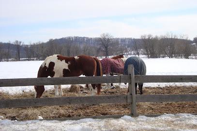 Horse boarding stable Castle Rock Farm