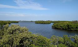 Jack Island