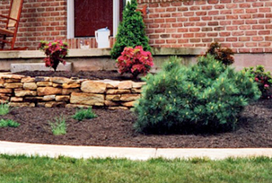 Parros Quality Lawn Care & Landscaping