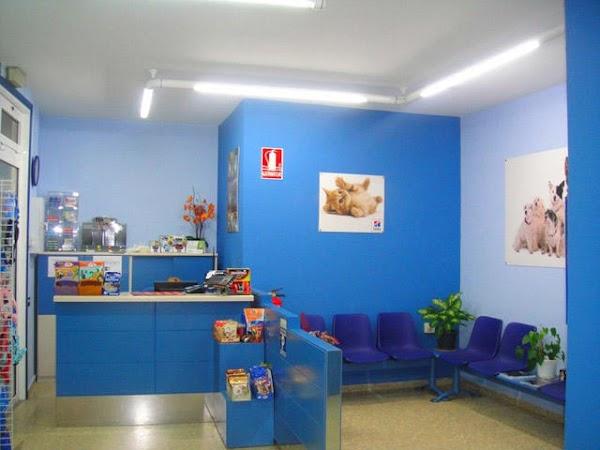Centro Veterinario Pintor Colmeiro