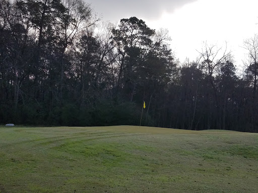Golf Course «Indian Shores Golf Course», reviews and photos, 2141 Whitefeather Trail, Crosby, TX 77532, USA