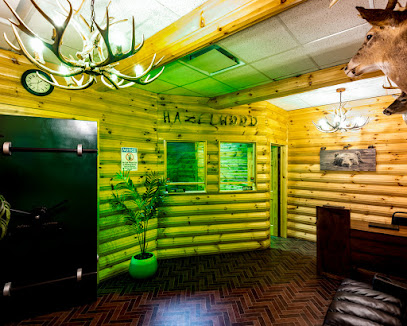 experience-wisdells-things-to-do-guys-getaway-dells-escape-rooms
