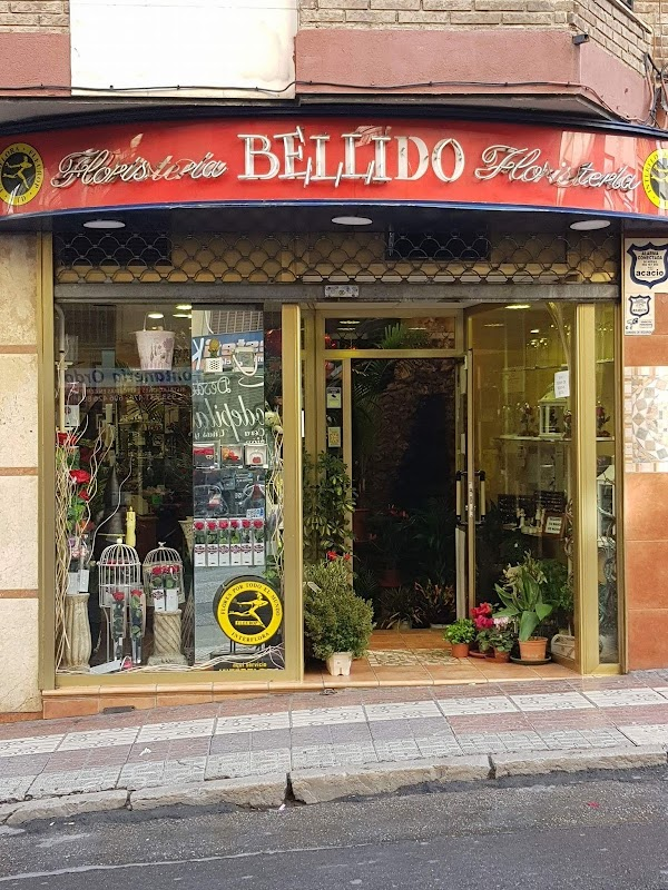 Floristeria Bellido