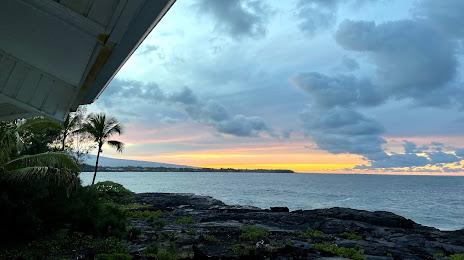 Tree Expert Hawaiian Paradise Park, HI