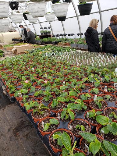 Jardinerie Farmer Brown's Greenhouse à Dawson Settlement (NB)   LiveWay