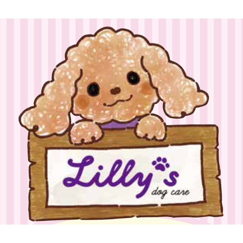 Lilly's Dog Care