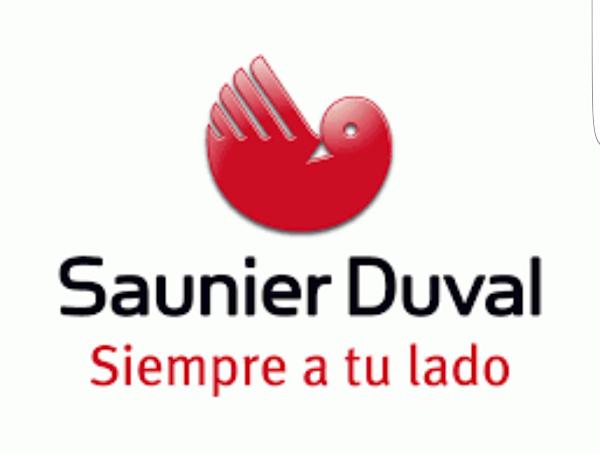 servicio tecnico Sanier Duval calderas