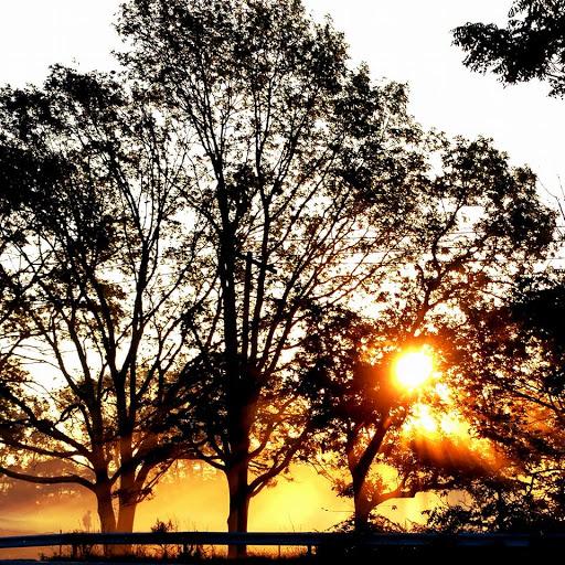 Golf Course «Heatherwood Golf Club», reviews and photos, 303 Arrowhead Ln, Centereach, NY 11720, USA
