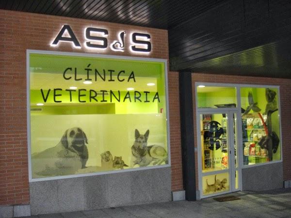 Clínica Veterinaria Asís