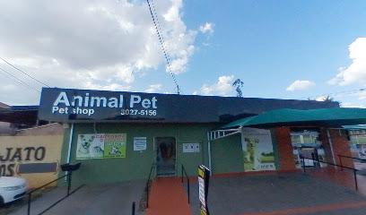 Animal Pet Loja 1