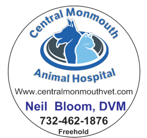 Animal Hospital Central Monmouth Animal Hospital Neil Bloom Dvm Reviews And Photos