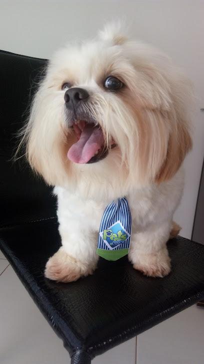 Pets.Cão Petshop e Clínica Veterinária