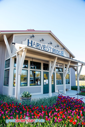 Winery «Harvest Ridge Winery», reviews and photos, 447 Westville Rd, Marydel, DE 19964, USA