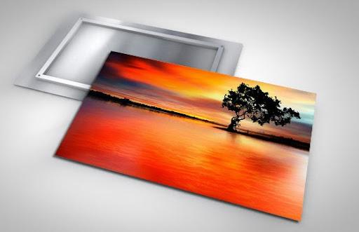Print Shop «Shiny Prints HD Metal Prints», reviews and photos, 880 Jupiter Park Dr #6, Jupiter, FL 33458, USA