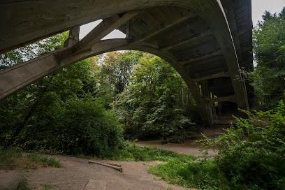 Ravenna Park in Seattle WA