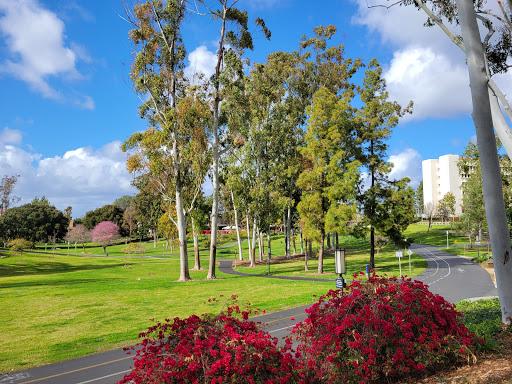 University of California Irvine-img