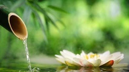 imagen de masajista Tratamientos Naturales Mihaela