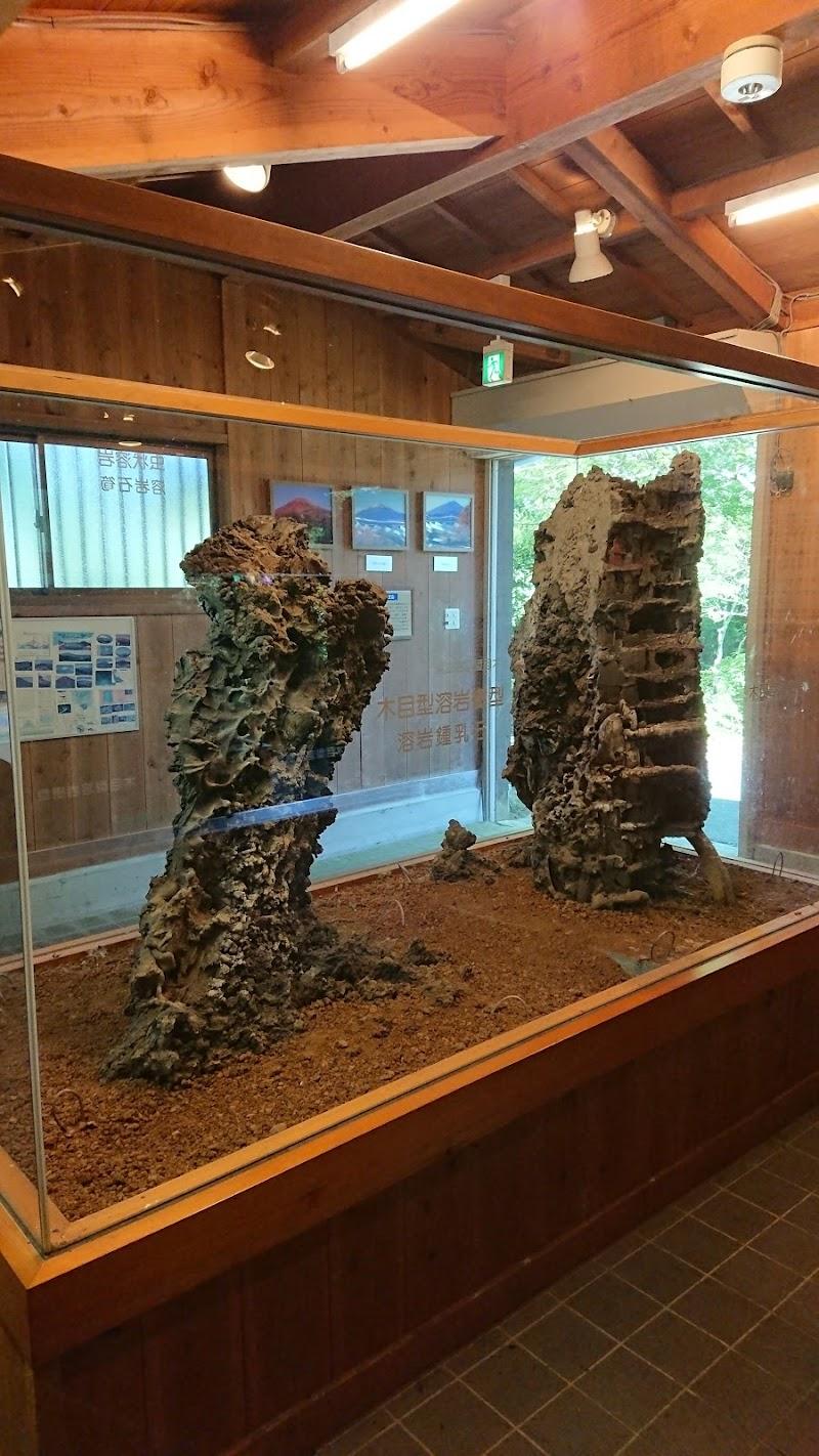 溶岩樹型地下観察体験ゾーン