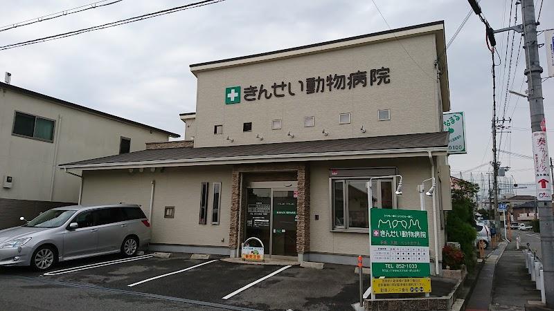 きん せい 動物 病院