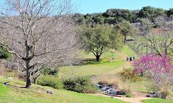 Flat Creek Disc Golf Destination