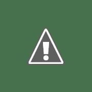 Business Reviews Aggregator: Respiratory Homecare Solutions (RHS)