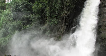 Wayanad Sightseeing Packages