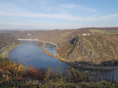 Rhine castles trail / Section 10