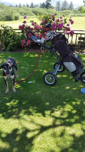 Golf Course «Seaside Golf Course», reviews and photos, 451 Avenue U, Seaside, OR 97138, USA