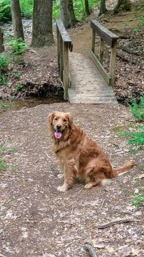 Dog Park «Perry Paw Dog Park», reviews and photos, 9033 Honeygo Blvd, Perry Hall, MD 21128, USA