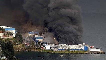 Fire & Arson Investigacion Pericial de Incendios