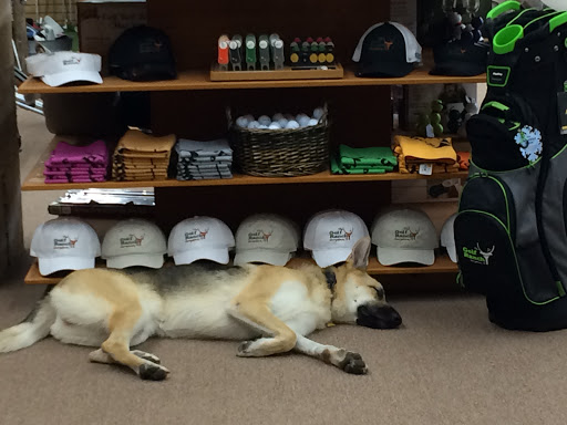 Sporting Goods Store «The Golf Ranch», reviews and photos, 610 N Austin Ave #120, Georgetown, TX 78626, USA
