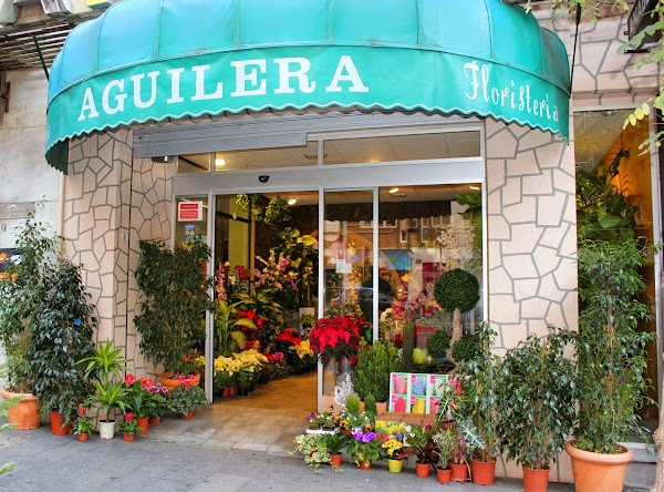 Floristería Aguilera