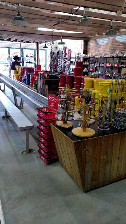 experience-wisdells-things-to-do-dells-mining-company