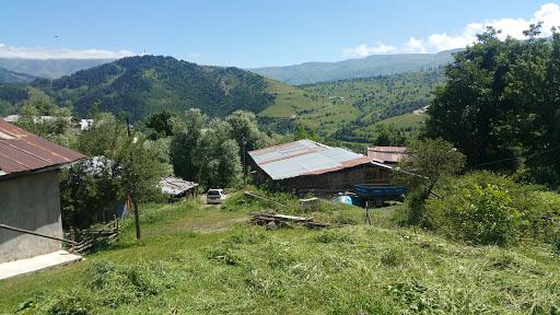 Ballı Köyü Muhtarlığı