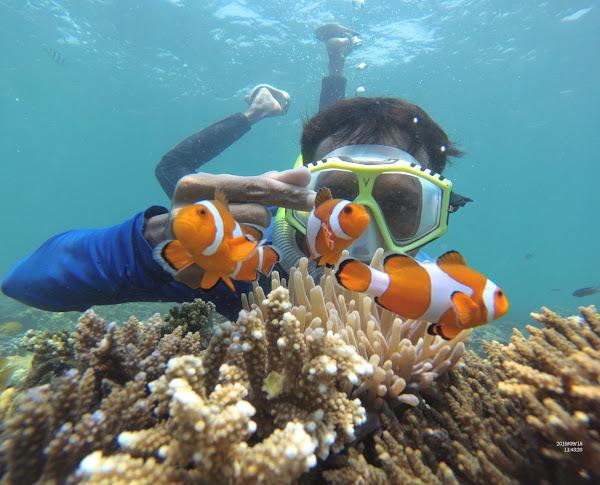 Gili Ketapang Snorkeling Jatim