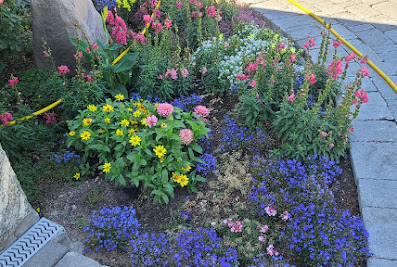 Cheap landscaping llc and snow removal